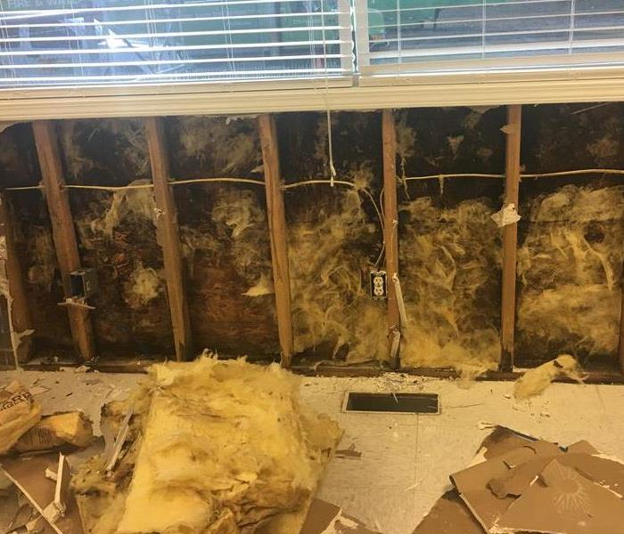 Moldy Office in Bowling Green Kentucky