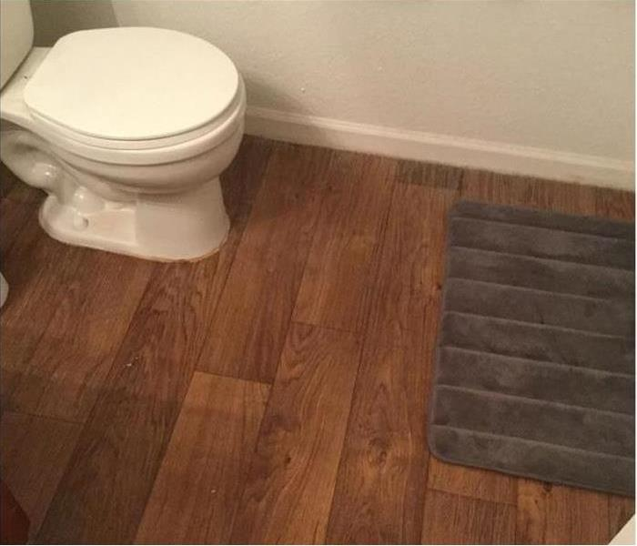 Water Damage Toilet Overflow: Three Things You Should Know