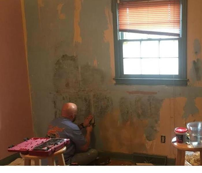 Mold Remediation Mold under Wall Paper!!!