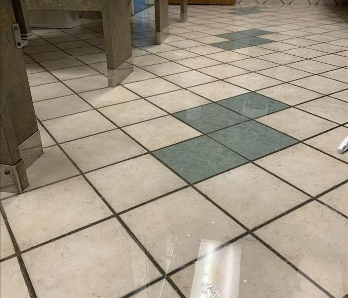Tile flooring in a bathroom with standing water