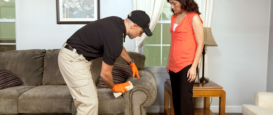 Bowling Green, KY carpet upholstery cleaning